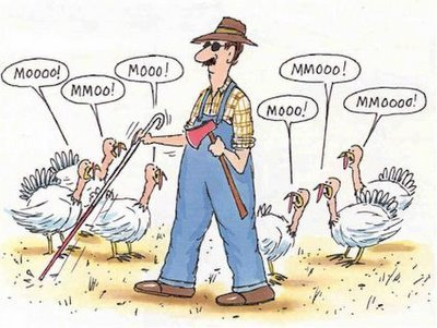 Thanksgiving-funny-2